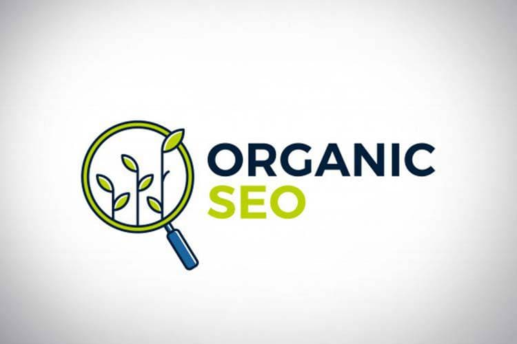 SEO / Natural Search Marketing